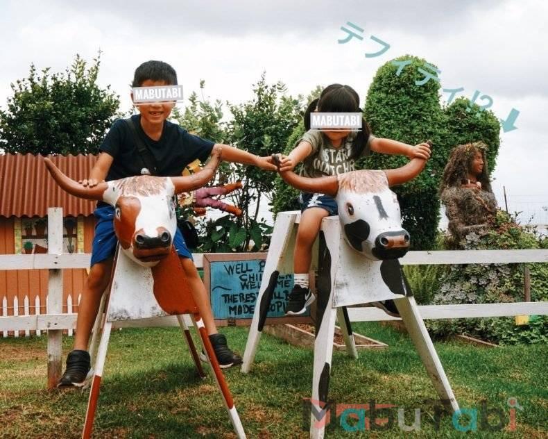牛の乗り物