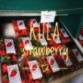 イチゴが食べたい! クラ・カントリー・ファーム (Kula Country Farms) へGO!【2018/ハワイvol.12】